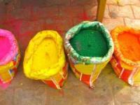 游客分享在印度体验侯丽节的难忘经历
