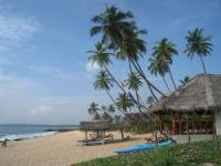走进斯里兰卡 沙滩爱好者的天堂