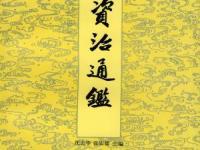 《白话资治通鉴》全20册  1993 简体横排